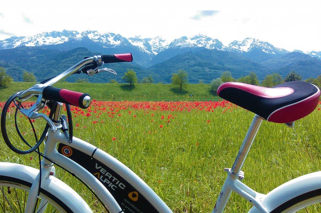 VERTIC & ALPIC bicycle