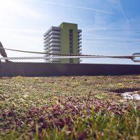 VERTIC's ALTILIGNE horizontal lifeline system on flat roof