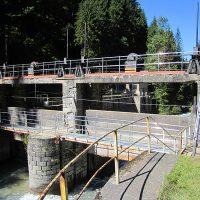 VERTIC's guardrails on dam